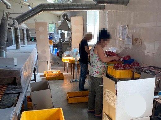 Новини інспекційної кампанії з питань виявлення неоформлених трудових відносин